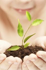 Økologisk skønhed med økologisk hudpleje